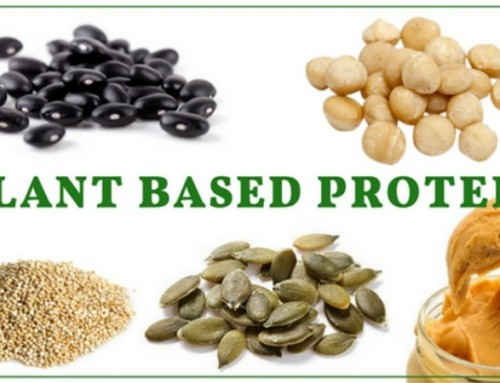 5 Of The Best Plant Based Protein Food Group Sources