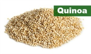 Quinoa - Plant Based Protein Source